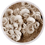 Life On The Rocks In Sepia Round Beach Towel
