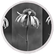 Light Of Day In Black And White Round Beach Towel