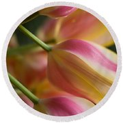 Light Of Spring Round Beach Towel