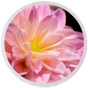 Light Pink Dahlia 1 Round Beach Towel