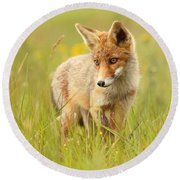 Lil' Hunter - Red Fox Cub Round Beach Towel