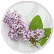 Lilac Flowers - White Background Round Beach Towel