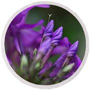 Lilac Petals And Purple Buds Round Beach Towel