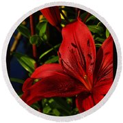 Lilies By The Water Round Beach Towel by Randy Hall