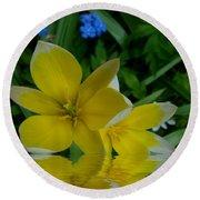 Lilium Of Gold Round Beach Towel