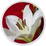 Lily Against Red Wall Round Beach Towel by Garry Gay
