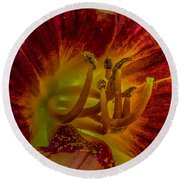 Lily Closeup Round Beach Towel