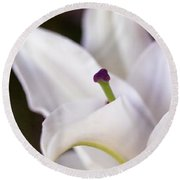 Lily Fair Round Beach Towel