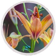 Lily From The Garden Round Beach Towel