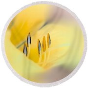 Lily Impressions Round Beach Towel