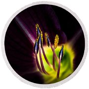 Lily Of The Forest Round Beach Towel