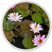 Lily Pad Haven Round Beach Towel