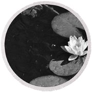Lily Pad In Bloom Round Beach Towel