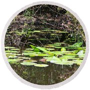 Lily Pads 1 Round Beach Towel