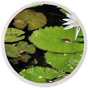 Lily Pads And Lotus Flower Round Beach Towel