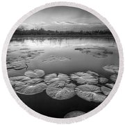 Lily Pads In The Glades Black And White Round Beach Towel