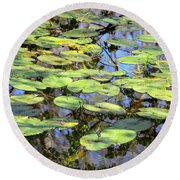 Lily Pads In The Swamp Round Beach Towel