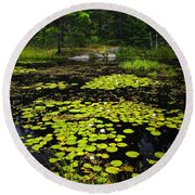 Lily Pads On Lake Round Beach Towel