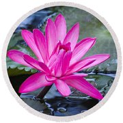 Lily Petals Round Beach Towel by Carolyn Marshall