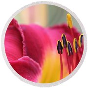 Lily Photo - Flower - Rusty Red Round Beach Towel