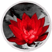 Lily Red And Koi Round Beach Towel