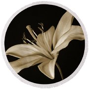Lily Round Beach Towel by Sandy Keeton