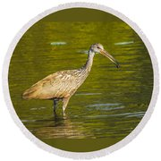 Limpkin With A Snack Round Beach Towel