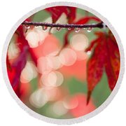 Line Of Reflections Round Beach Towel by Anne Gilbert