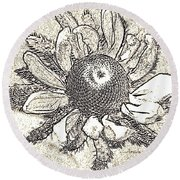 Linear Coneflower Round Beach Towel