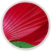 Lines Of Nature Round Beach Towel