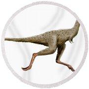 Linhenykus Dinosaur Round Beach Towel