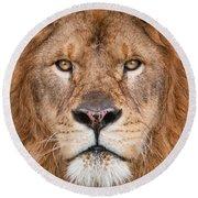 Lion Close Up Round Beach Towel