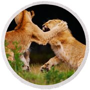 Lion Cubs Playing In The Grass Round Beach Towel