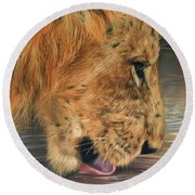 Lion Drinking Round Beach Towel