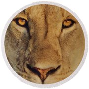 Lion Face  Round Beach Towel