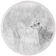 Lioness In Black And White Round Beach Towel