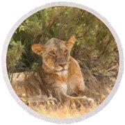 Lioness  Panthera Leo Resting Round Beach Towel