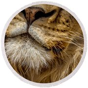 Lions Mouth 2 Round Beach Towel