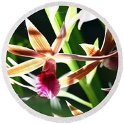 Lit Up Orchid Round Beach Towel