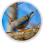 Little Birdie  Round Beach Towel