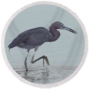 Little Blue Heron Round Beach Towel