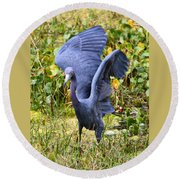 Little Blue Heron Blue Round Beach Towel