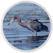 Little Blue Heron Egretta Caerulea Round Beach Towel
