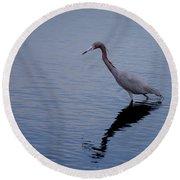 Little Blue Heron On The Hunt Round Beach Towel