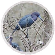 Little Blue Lake Martin Louisiana Round Beach Towel