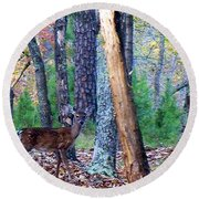 Little Deer In Autumn Round Beach Towel
