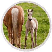 Little Foal Round Beach Towel