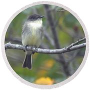 Little Lady Eastern Kingbird Round Beach Towel