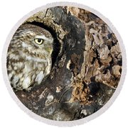 Little Owl 4 Round Beach Towel
