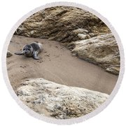 Little Things In Life Round Beach Towel